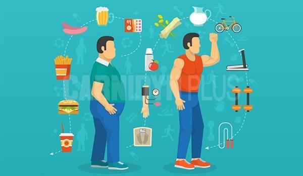 metabolismo-nutrizione