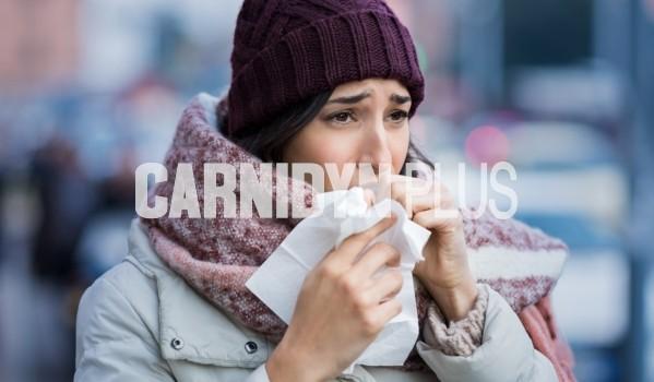 influenza-superata
