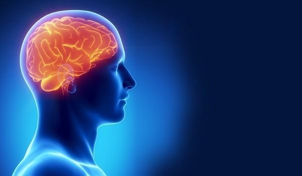 esercizio-fisico-benefici-cervello
