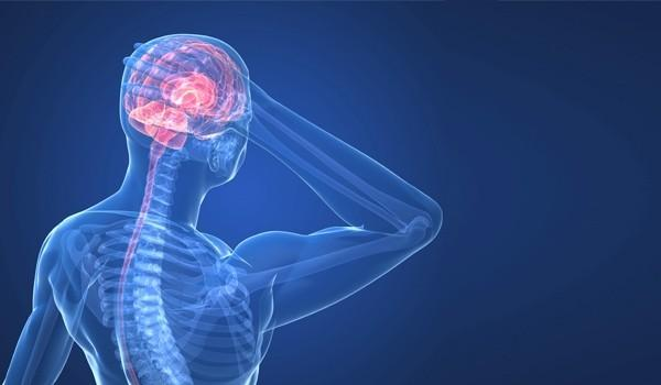 l-attivita-fisica-affatica-il-cervello