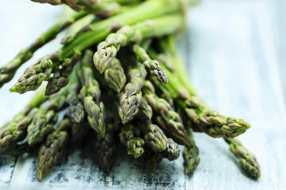 L asparagina e L carnosina